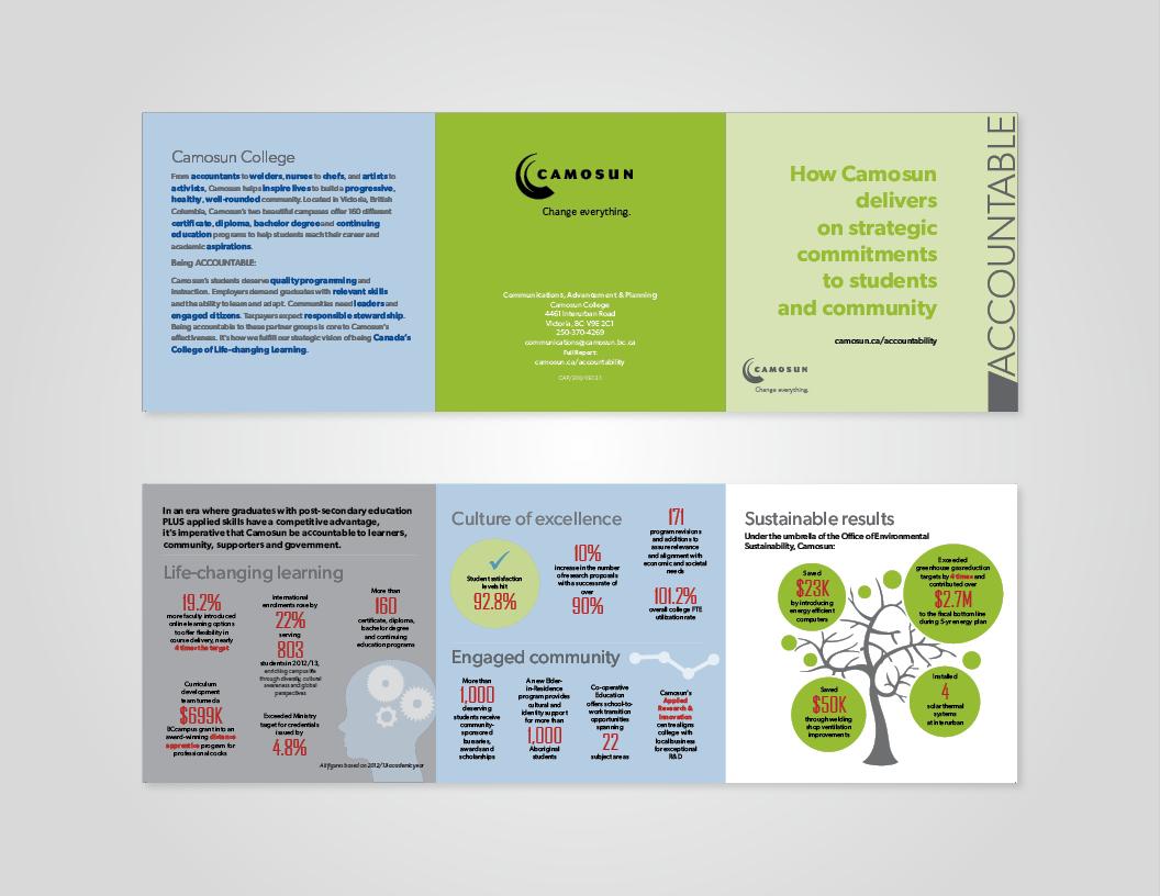 CarolineMitic_Portfolio_Camosun_Infographics-1