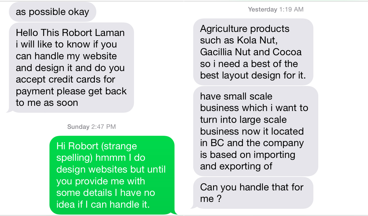 Ah, the web design scam - Caroline Mitic   Graphic Design   Web ...